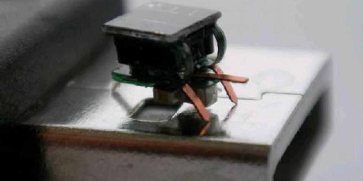 I-SWARM: Robots autónomos con complejo de insectos