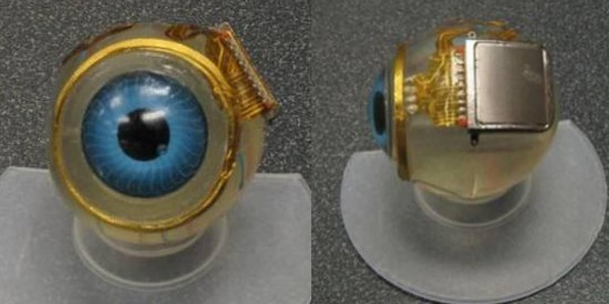 El MIT trabaja para que los no videntes recuperen la vista