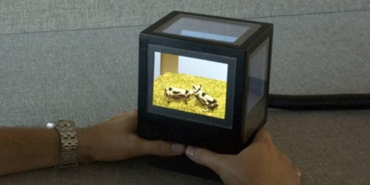 pCubee entrega 3D sin lentes y además es interactivo