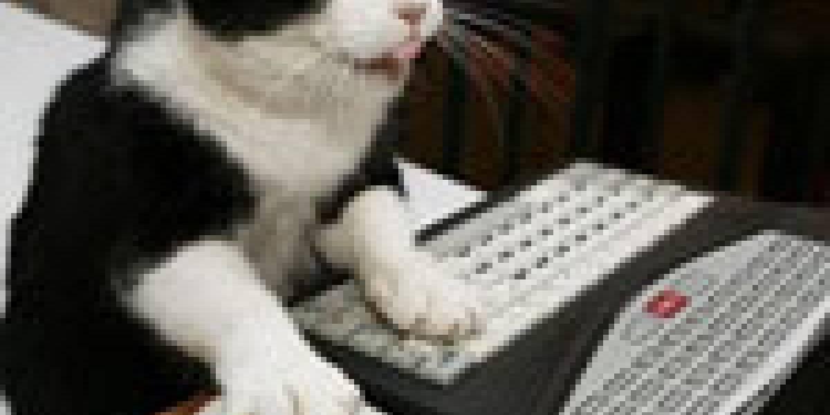 Niños matan gato en microondas = no más juegos por 1 año