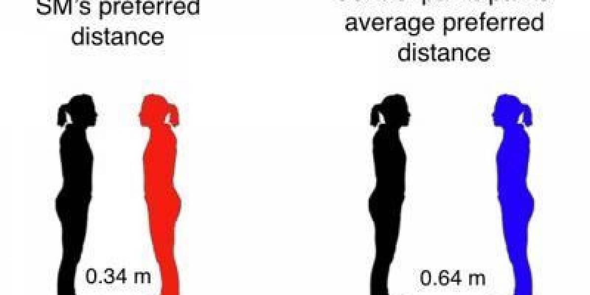Identifican zona del espacio personal en el cerebro
