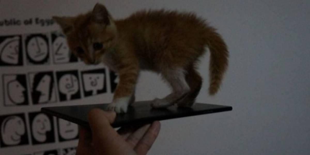 Sony Togari, el futuro Xperia ZU, se filtra en una imagen