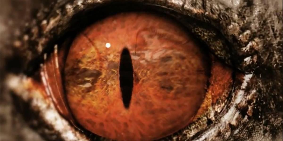 E3 2012: Soul Sacrifice se muestra en un nuevo video