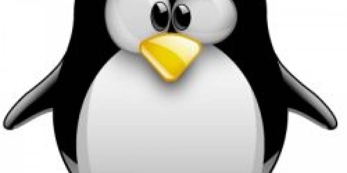 """Linus Torvalds dijo que Linux está """"hinchado y enorme"""""""