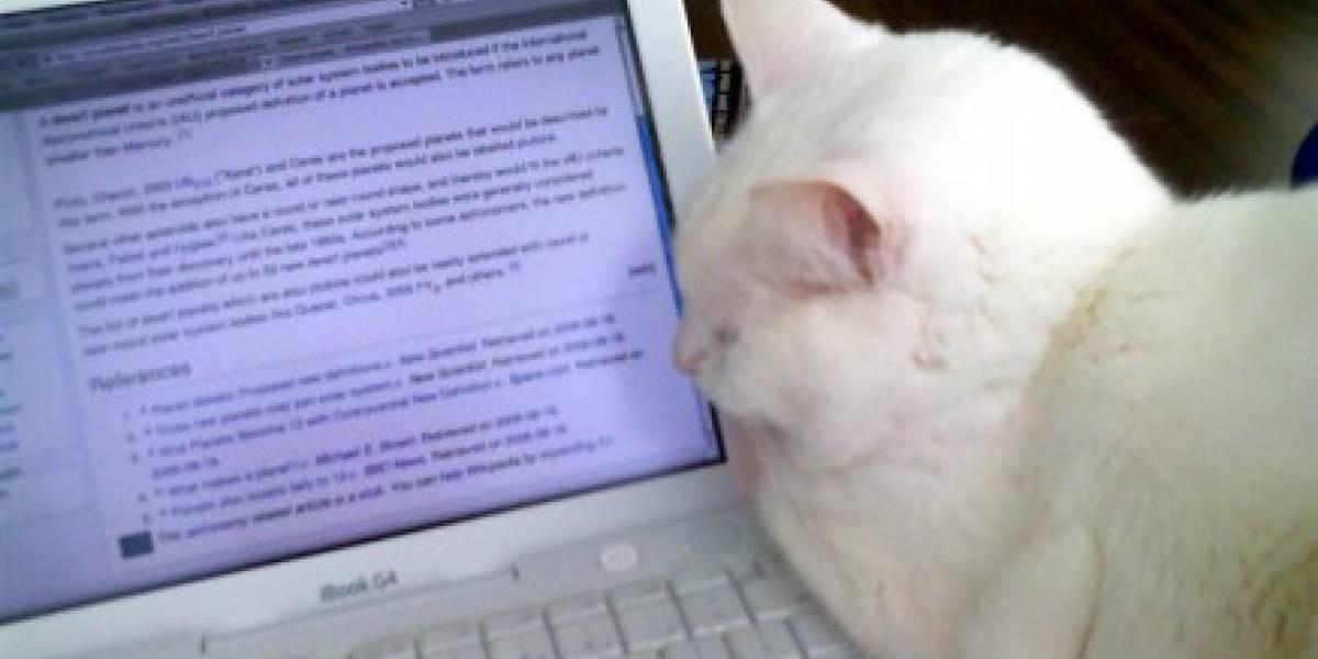 Firma de abogados anti-piratería vandaliza la Wikipedia