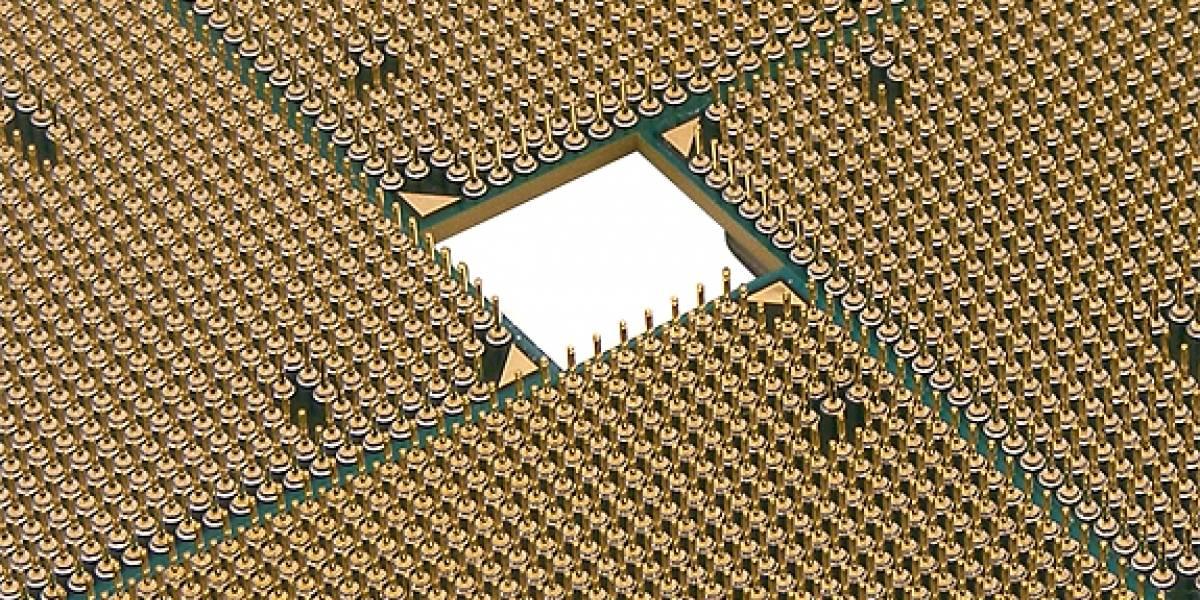 Cuatro nuevos AMD Athlon II
