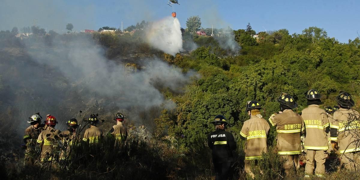 Onemi decretó alerta roja para comuna de Valparaíso por incendio forestal