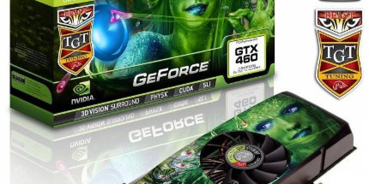 Más detalles de la GTX 460 overclockeada a 850MHz
