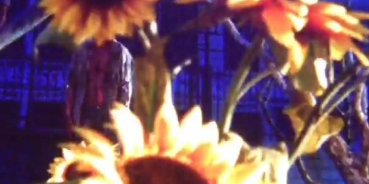 Sigue el misterio: el segundo teaser de Bethesda muestra flores quemándose