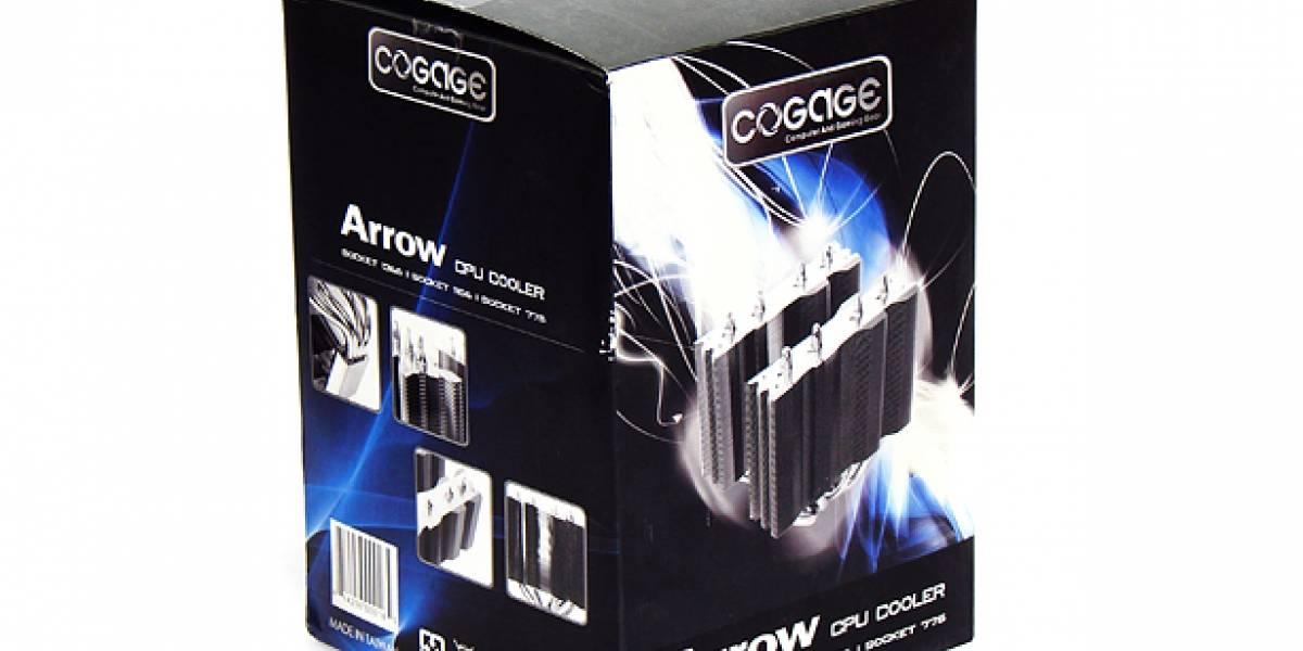 CHWLabs: COGAGE Arrow