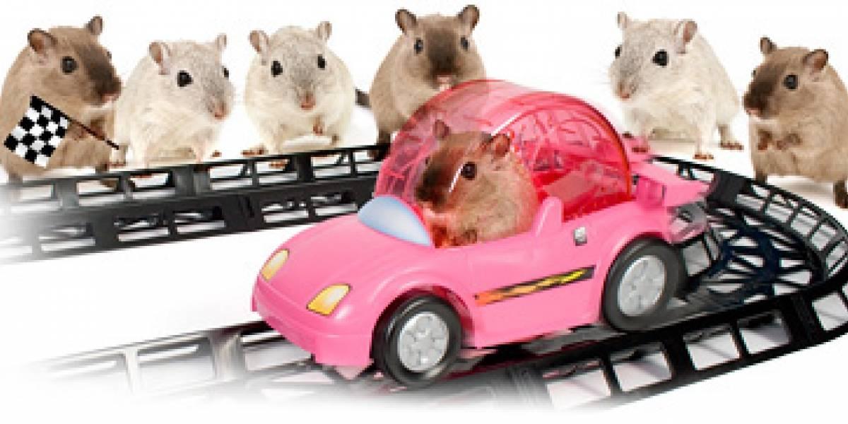 Impresentablemente tierno: Auto de carrera para hamsters