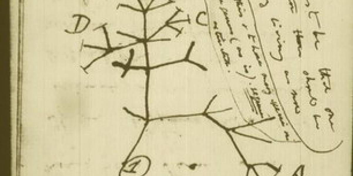 Imperdible: Más de 100.000 manuscritos de Darwin disponibles en Internet