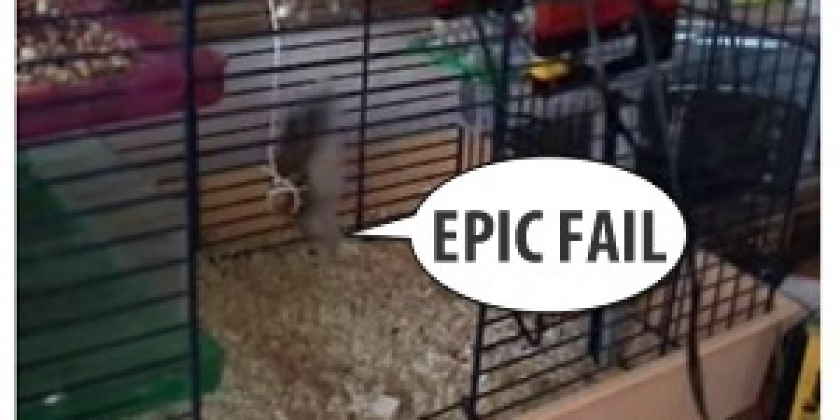Imperdible: Dopey la hámster y su ascensor de LEGO