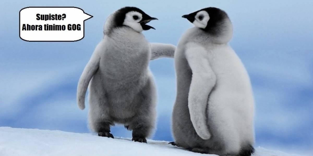 GOG.com ya tiene soporte para Linux