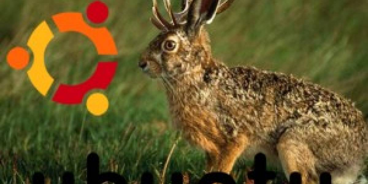 Disponible Ubuntu Jaunty Jackalope 9.04 Alpha 1