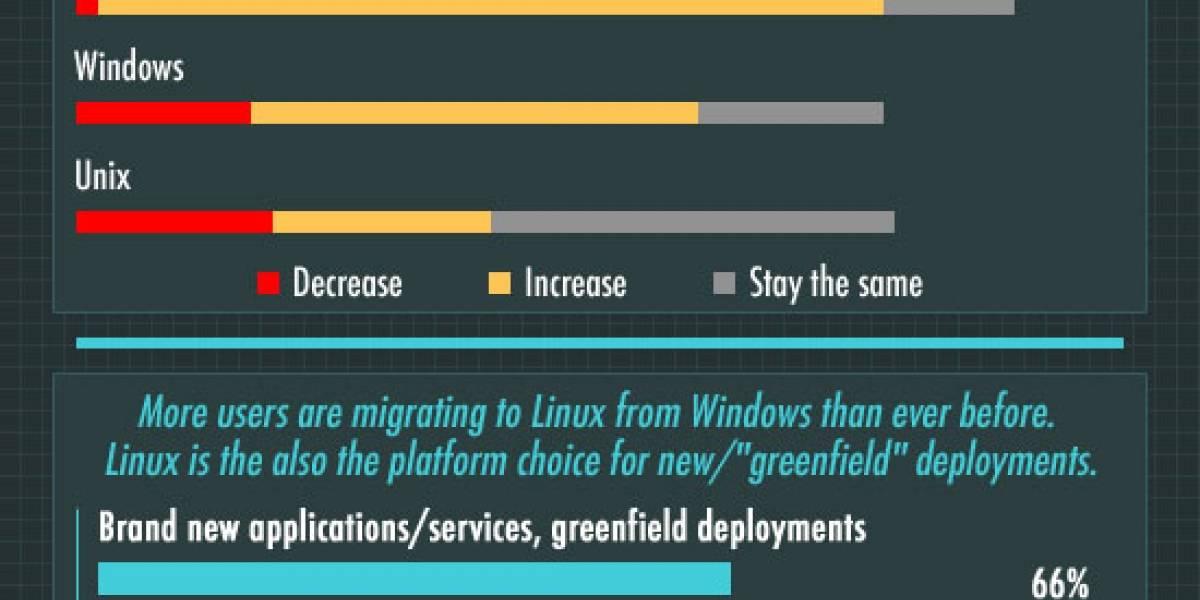 Grandes empresas manifiestan su preferencia por Linux para servidores