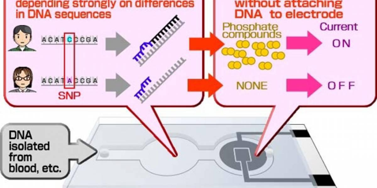 Panasonic identifica características del ADN