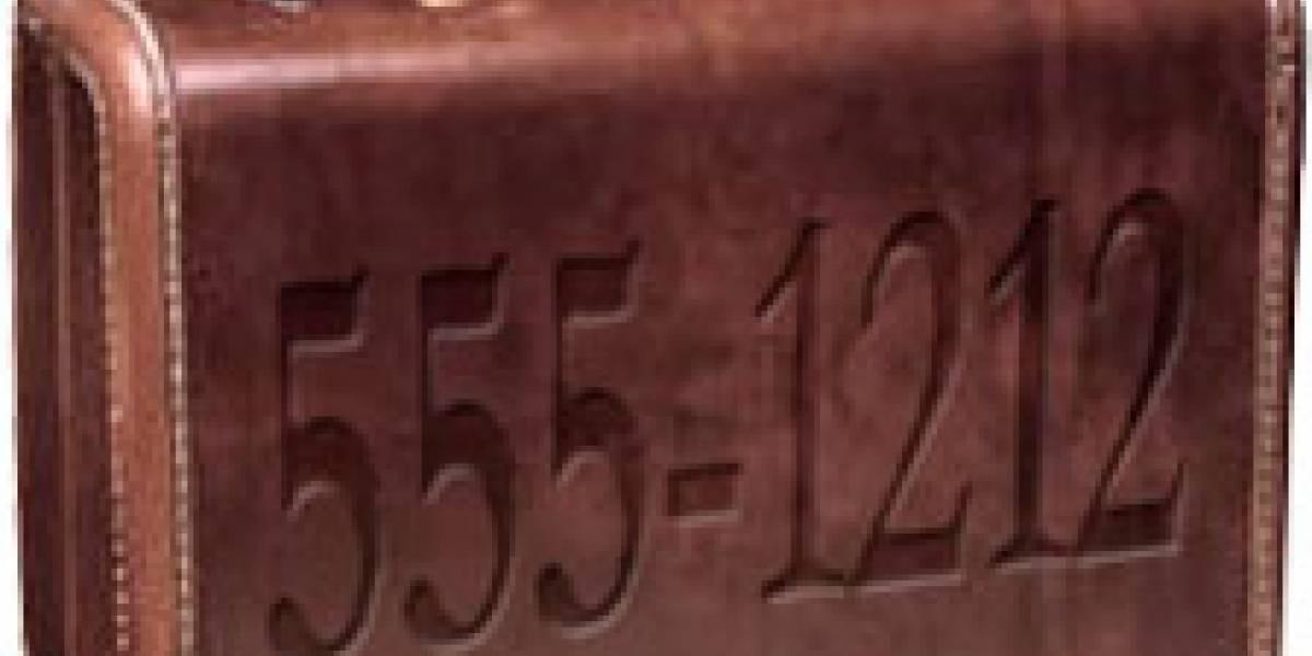 Portabilidad numérica llegará a México en Julio, luego República Dominicana, Brasil y Ecuador el 2009 -- Chile y Perú para el 2010