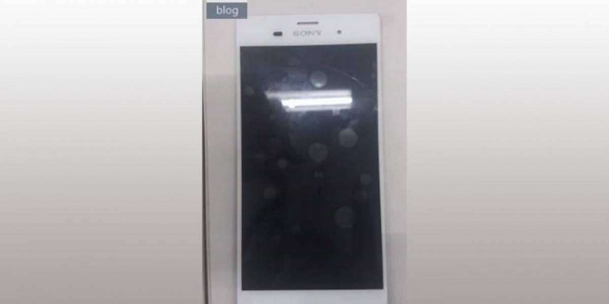 Aparece supuestas imágenes del Sony Xperia Z3 y su versión Compact