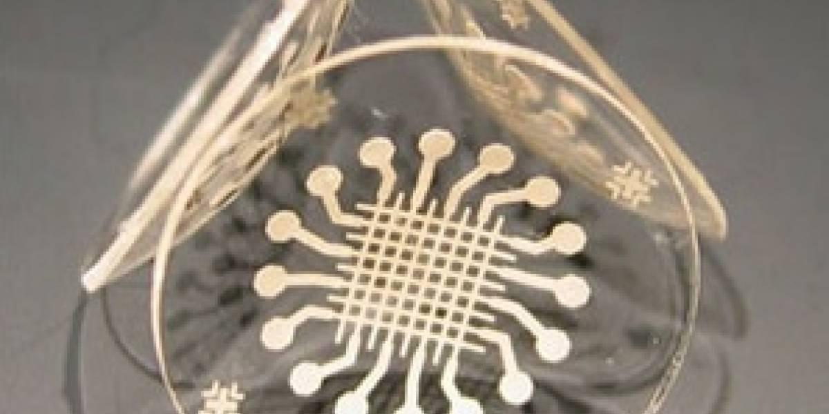Crean lentes de contacto que pueden monitorear el glaucoma