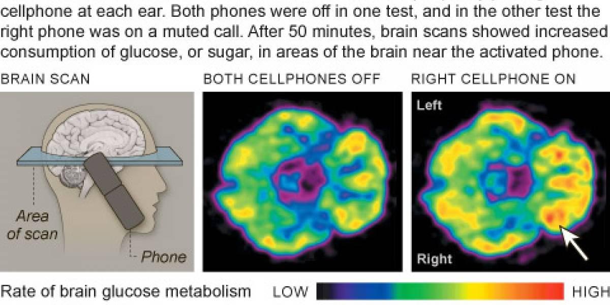 Hablar 50 minutos por celular altera el funcionamiento del cerebro