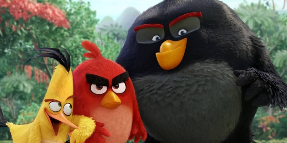 Se revela la primera imagen y reparto de la película de Angry Birds