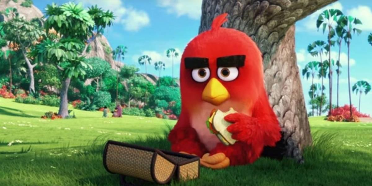 Vean el primer tráiler de la película de Angry Birds