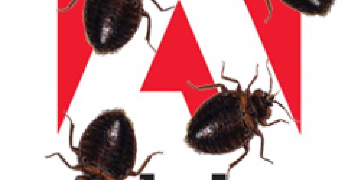 Adobe sería el protagonista de las mayores fallas de seguridad del año