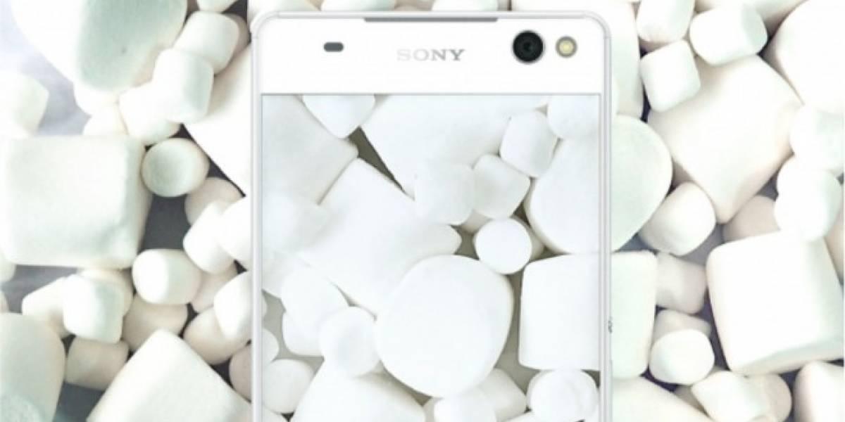 Sony confirma los equipos que se actualizarán a Android 6.0 Marshmallow