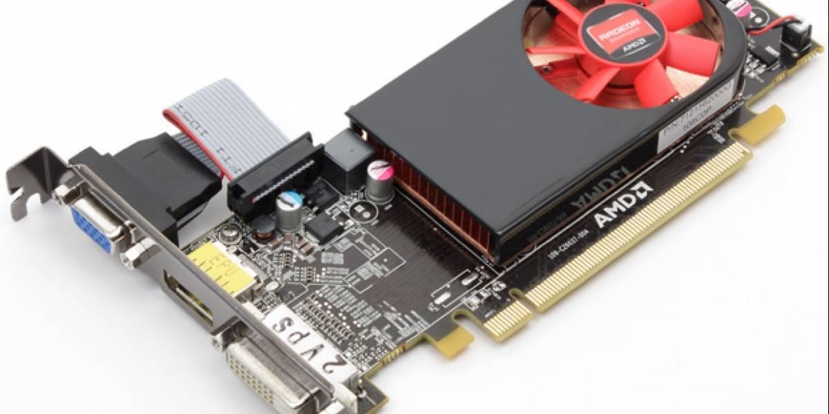 AMD Radeon HD 6450 hace su aparición