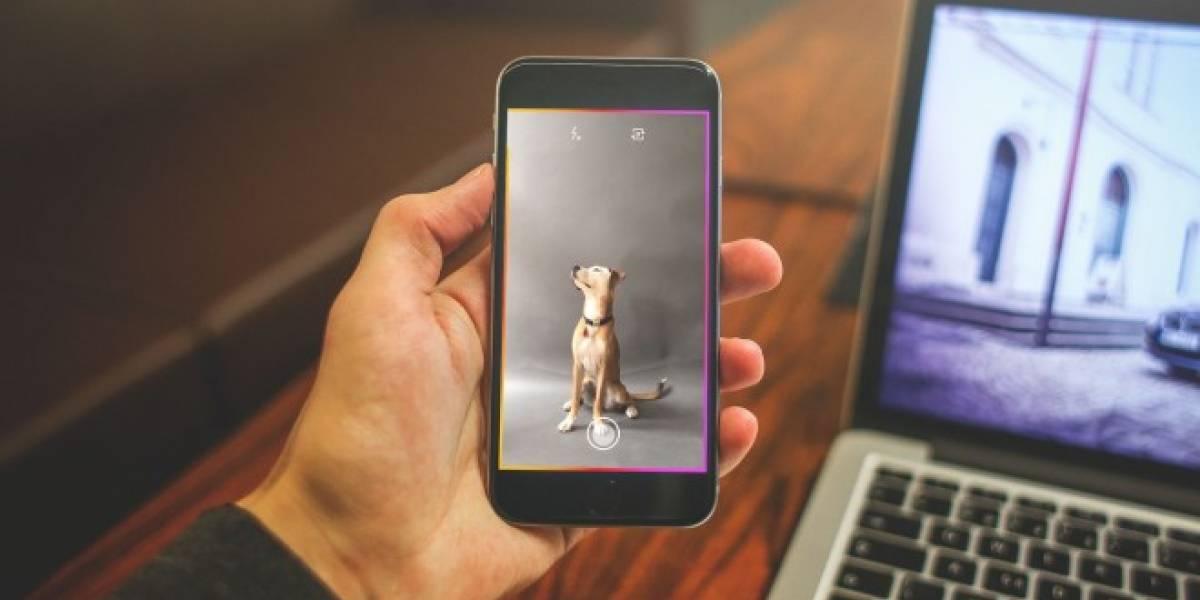 DSCO permite crear GIFs animados con filtros hipster