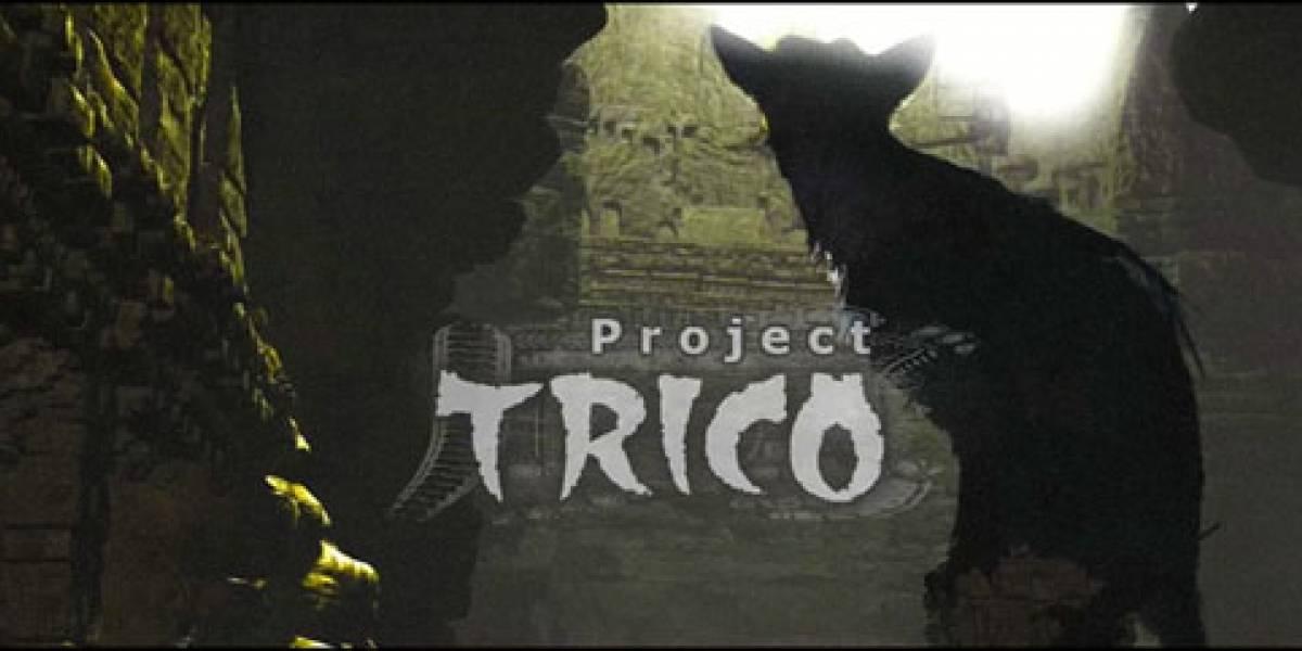 Futurología: primer video del esperado TRICO (OMG)