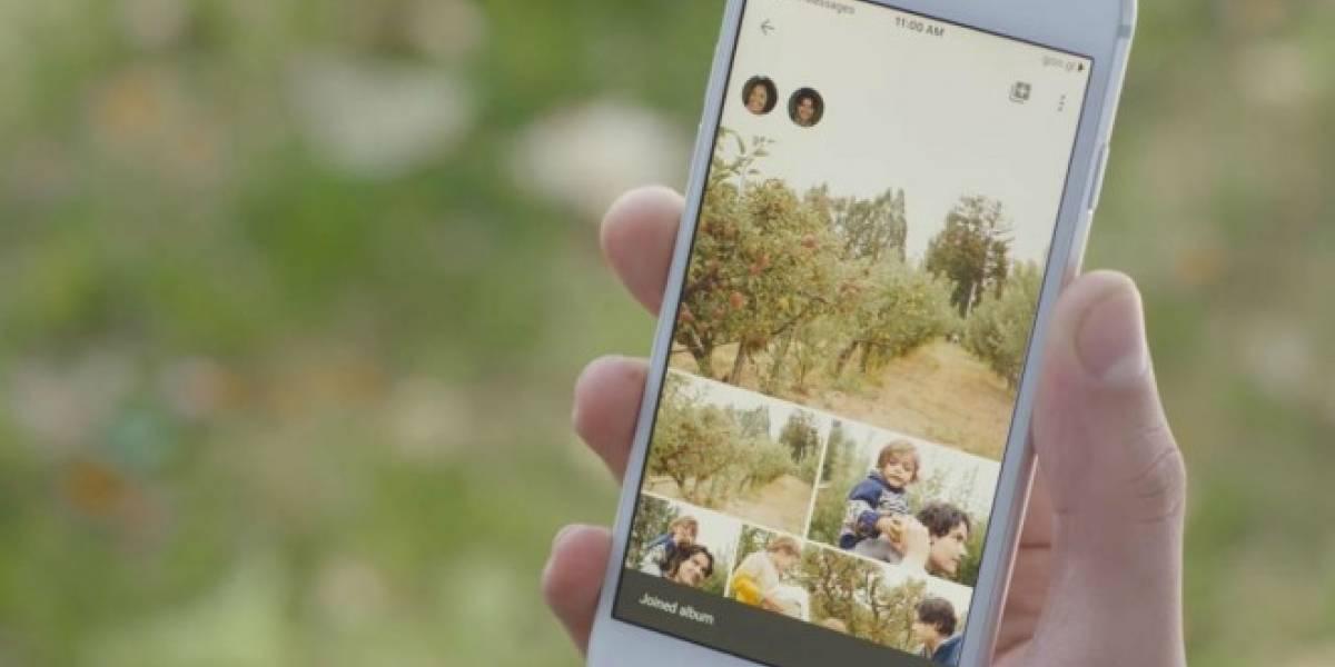 Ya puedes compartir tus álbumes en Google Fotos