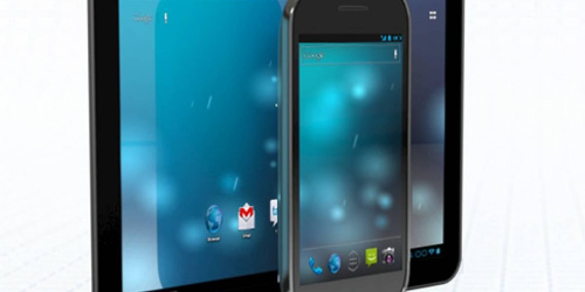 Google lanzaría un tablet de 7 pulgadas en abril