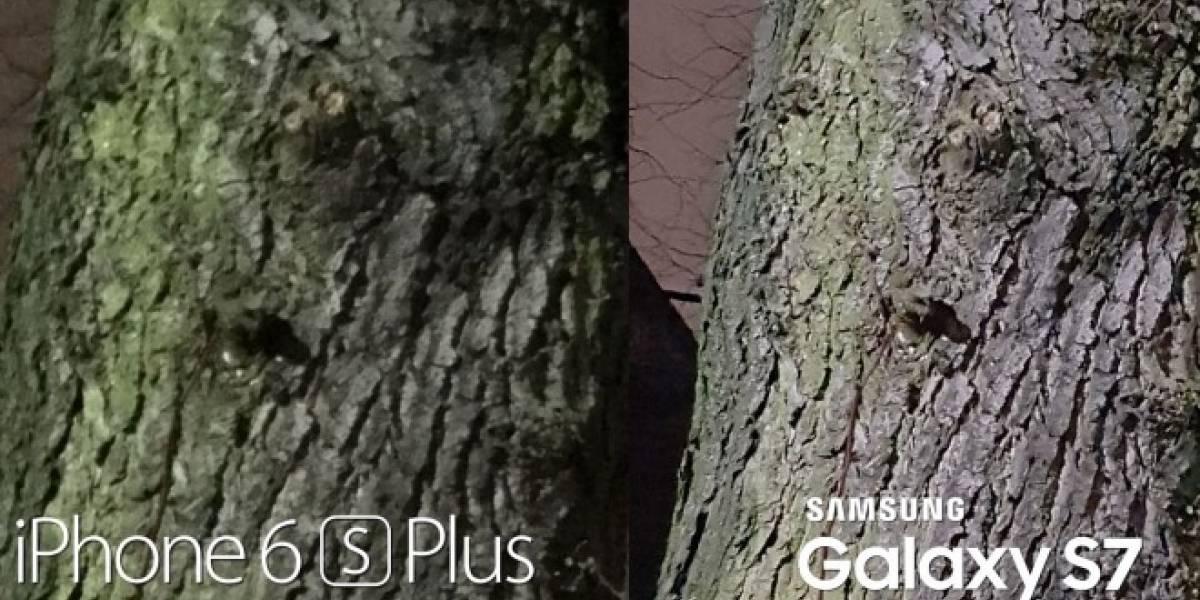 iPhone 6S vs Galaxy S7: ¿Cuál tiene la mejor cámara?