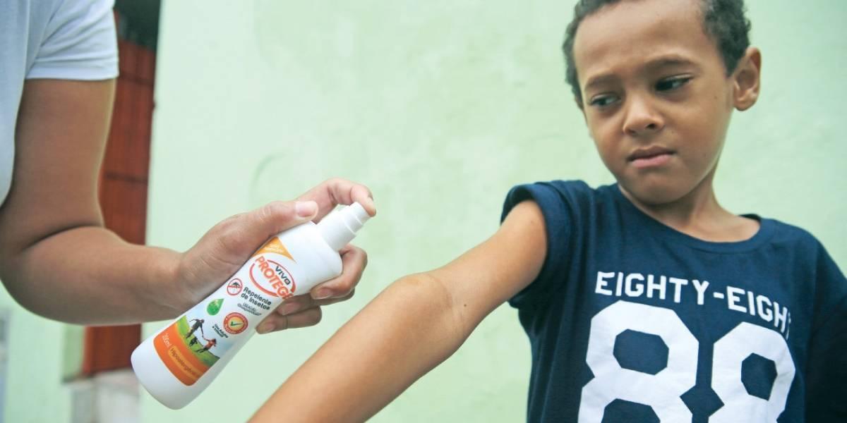 Febre amarela: Moradores de área de risco em SP se armam para combater mosquito