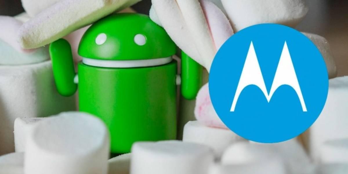 Motorola anuncia los equipos que se actualizarán a Marshmallow en México