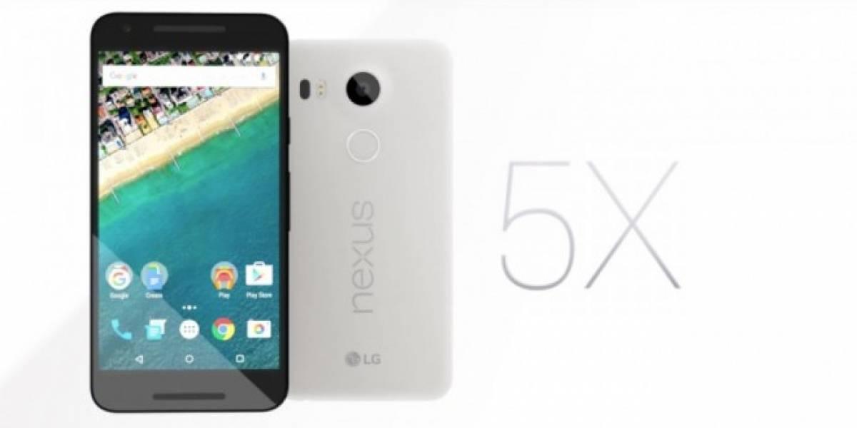 Algunos Nexus 5X tiene problemas con la pantalla táctil