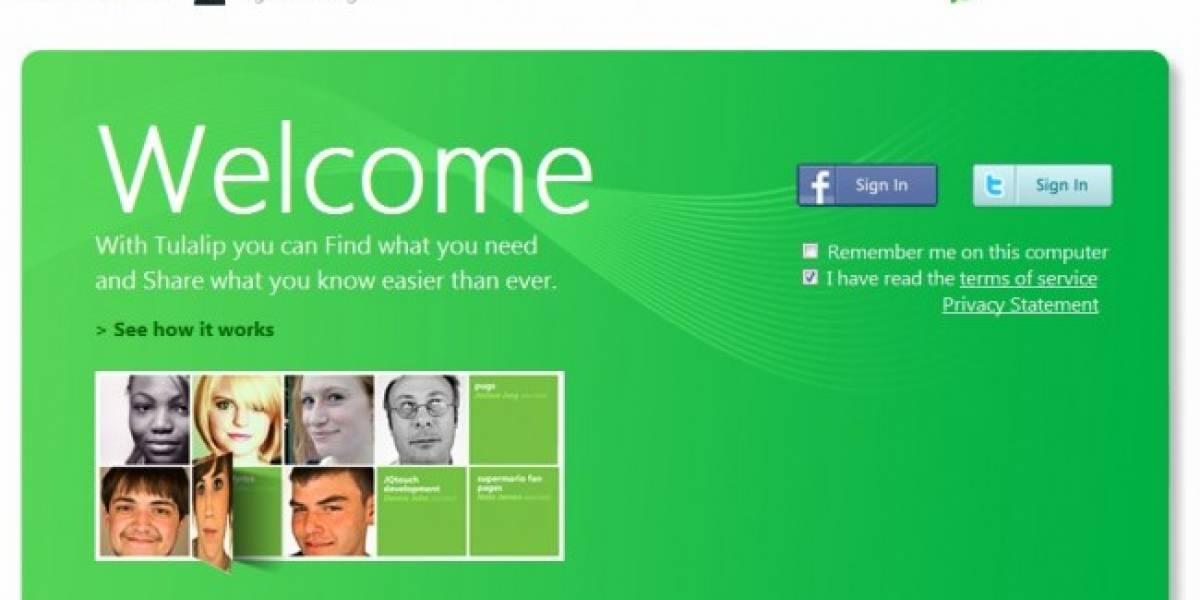 Tulalip: ¿La red social de Microsoft filtrada accidentalmente?