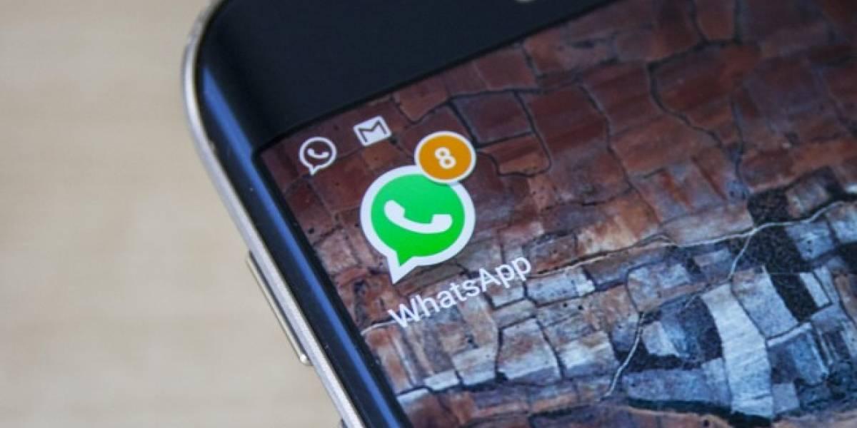 WhatsApp permitirá realizar capturas de pantalla dentro de la aplicación