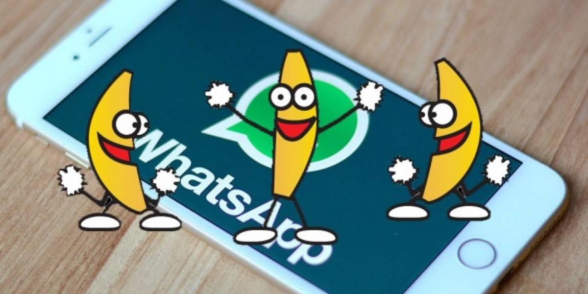 WhatsApp por fin soportará animaciones GIF