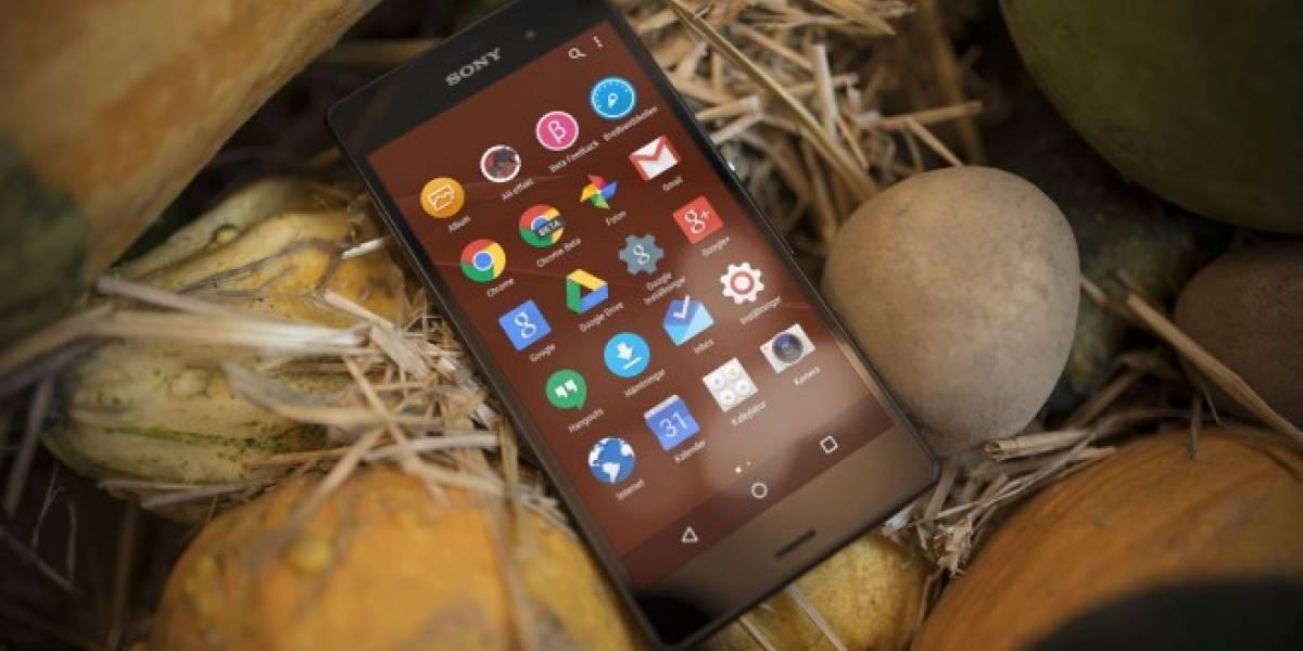 Aparecen imágenes de la nueva capa de personalización para equipos Sony Xperia