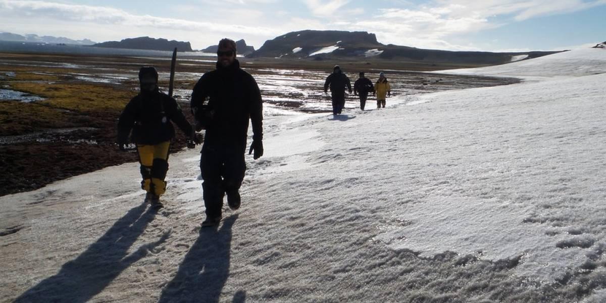 """Pesquisa brasileira tenta provar que o homem chegou à Antártida antes do """"descobrimento oficial"""""""