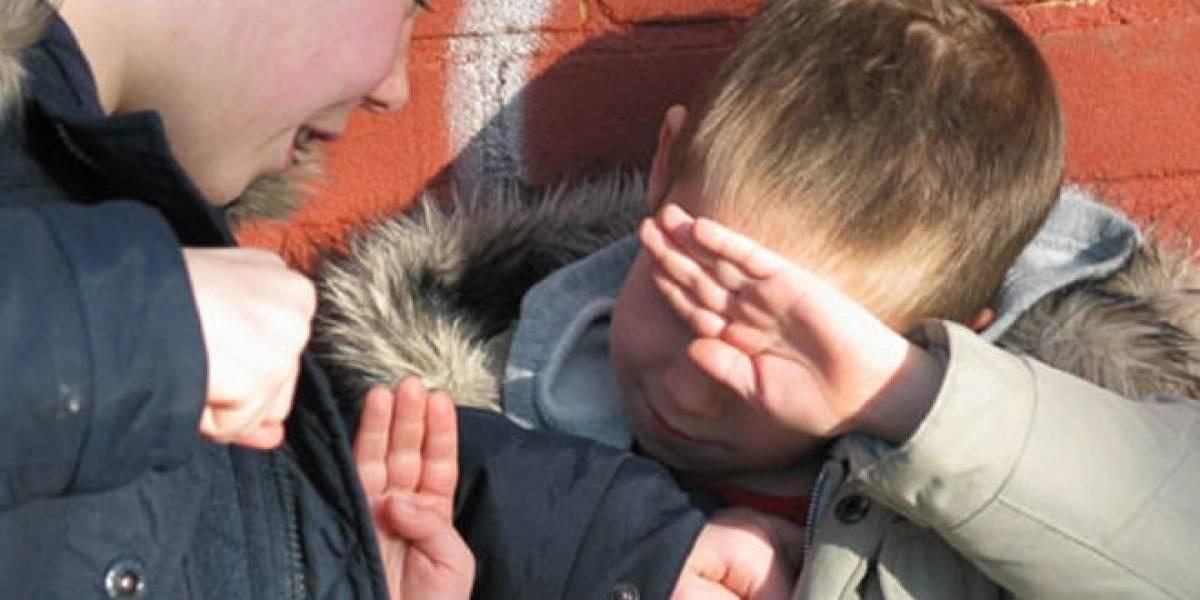 El caso de Karen Klein y la reacción al bullying en Internet