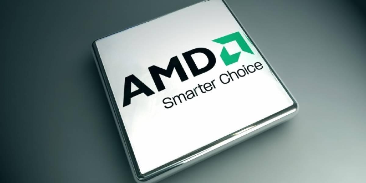 Según analistas, AMD está con problemas de liquidez