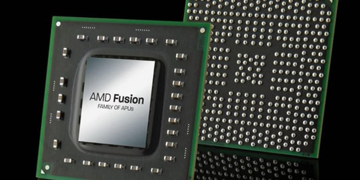 AMD cancela los APUs Wichita y Krishna