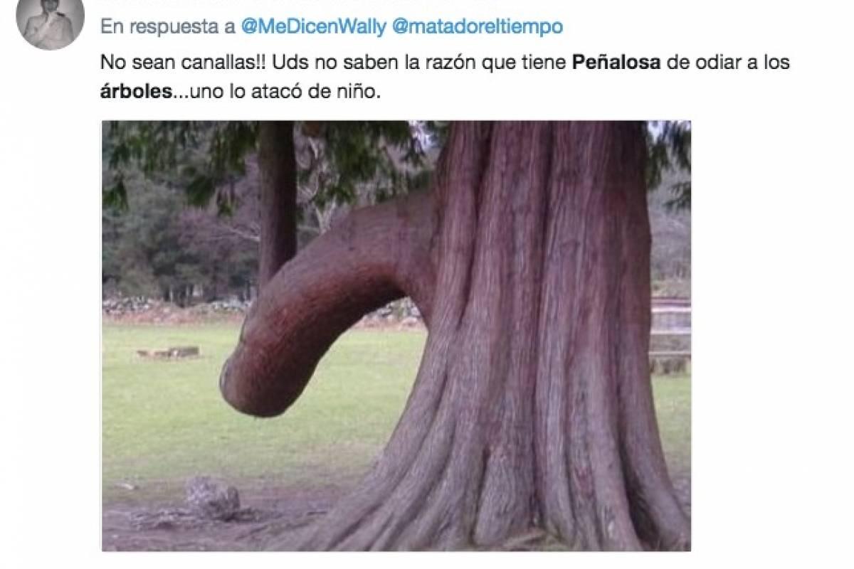 Memes por el trino sobre los árboles del alcalde Peñalosa Twitter
