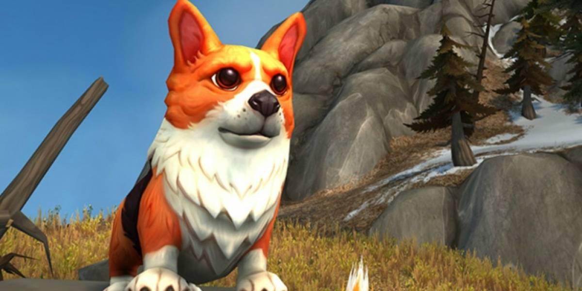 World of Warcraft está regalando Corgis por su 12 aniversario