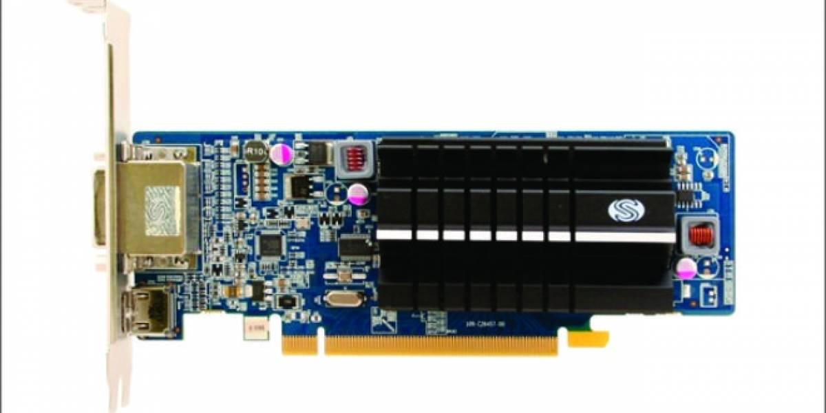 Sapphire FleX HD 6450 1GB DDR3: Eyefinity3 a bajo costo