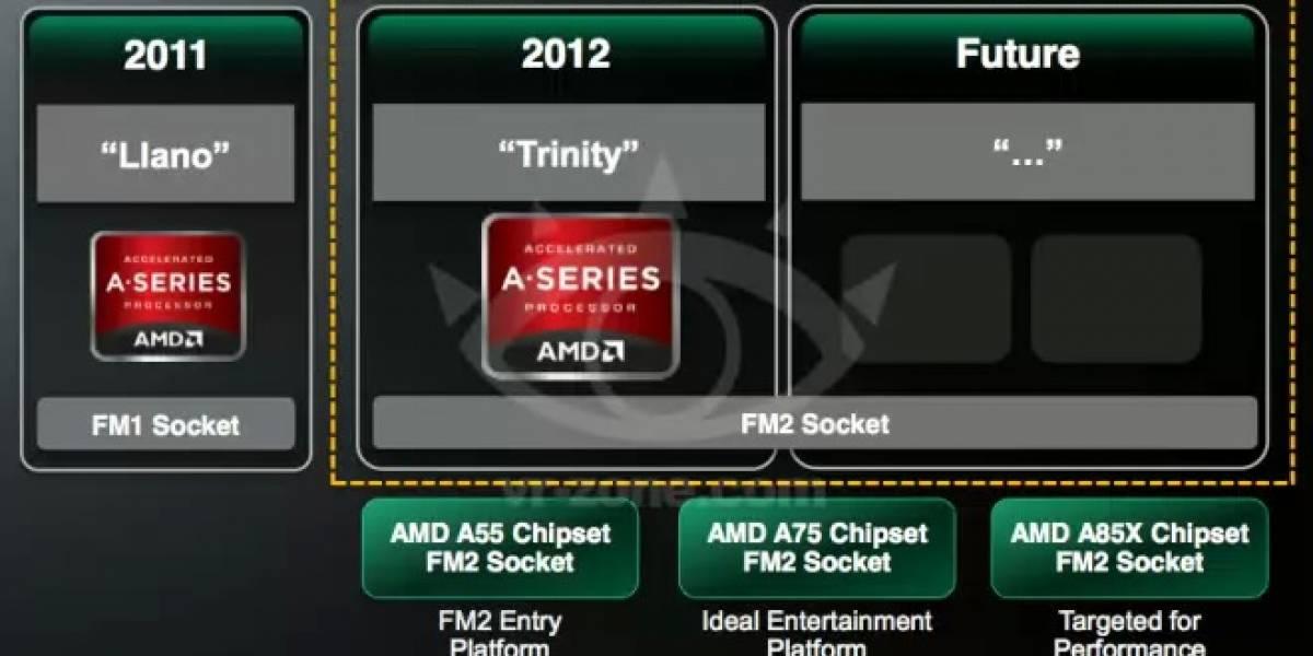 Socket AMD FM2 soportará los APU Kaveri